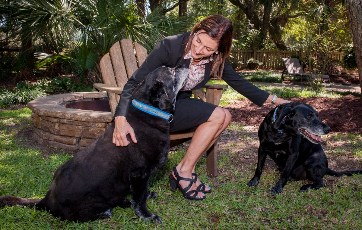 Above, Catherine Stuhr at home with her beloved labs.